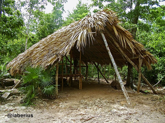 campamento chiclero