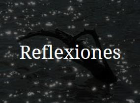 Reflexiones II